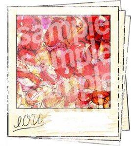 Polaroid IOU Snaps